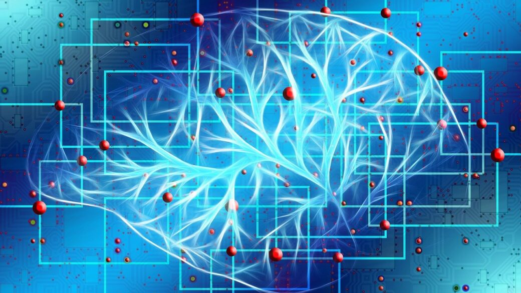 5 Simple Neuroanatomical Tips to Improve your Intelligence